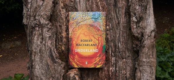 Underland trunk2